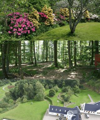 Her ses 3 mindre billeder af naturen omkring gammelrøj