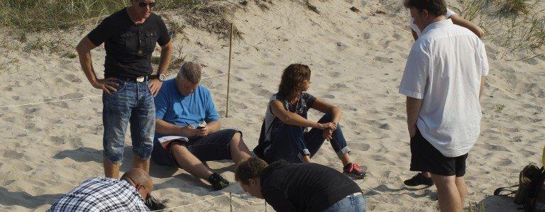 Billede af 6 mennesker på en strand igang med at lave en opgave på en teambuilding øvelse